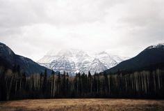 davidboysoncooper:  Took a trip up to Mt Robson highest...