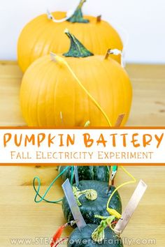 Pumpkin battery science experiment for kids. The perfect Halloween and Fall Harvest science experiment with electricity. Explore how electricity is produced by the fruit (pumpkins and squash) and how to connect the fruit to form a battery to power an LED. A fascinating lesson on the naturally occurring energy around us and how we can harness that for our own use. #FallScience #PumpkinScience #electricityexperiment #HalloweenScience