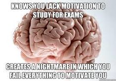 how your brain helps you study  ★·.·´¯`·.·★ follow @motivation2study for daily inspiration
