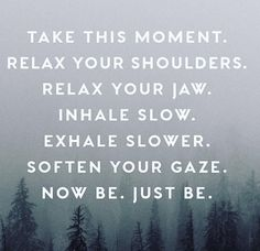 Take this moment. Relax your shoulders. Relax your jaw. Inhale slow. Exhale slower. Soften your gaze. Now be. Just be.
