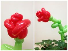Balloon rose   Balloon Twisting   Pinterest   Balloons, Roses and ...