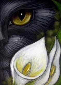 """Black Cat Behind the White Calla Lily Flowers"" par Cyra R. Eye Art, Animal Art, Color Pencil Sketch, Cat Art, Painting, Cat Sketch, Art, Painted Rocks, Art Portfolio"