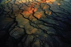 Parc de Yellowstone Tim Davis