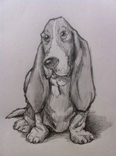 If you want to know how to draw a Bassett Hound dog, then just follow along with this simple, step-by-step tutorial. Anyone can be taught to draw if you follow a few simple directions.
