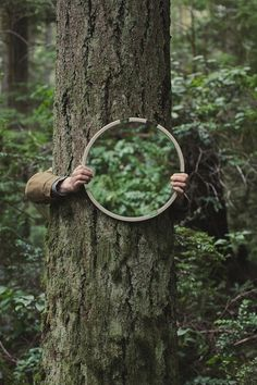 love mirrors in gardens (and forests!)