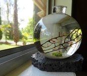 Image of 3x4 inch Biosphere aquahome with Lava Stand No maintenance Desktop aquarium kit