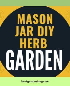 Learn about *** Deer Proof Cedar Complete Raised Garden Bed Kit Click the link for more. Diy Herb Garden, Garden Ideas, Home And Garden, Mason Jar Diy, Raised Garden Beds, Read More, Garden Design, Herbs, Backyard
