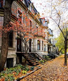 Travel to Canada - amusing photo Mont Royal Montreal, Quebec Montreal, Montreal Ville, Montreal Architecture, Architecture Design, Great Places, Beautiful Places, Beautiful Pictures, Images Instagram