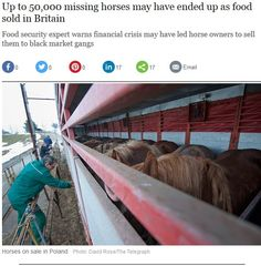 http://www.telegraph.co.uk/news/uknews/law-and-order/11938438/Up-to-50000-missing-horses-may-have-ended-up-as-food-sold-in-Britain.html