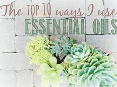 Daily essential oils, top 10 essential oils, how to use essential oils, essential oils for the whole family, natural health /// www.hello-my-love.com
