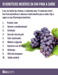"""A uva, da família das vitáceas, é conhecida como """"A rainha dos frutos"""". Esta fruta maravilhosa e saborosa é muito benéfica para a saúde."""