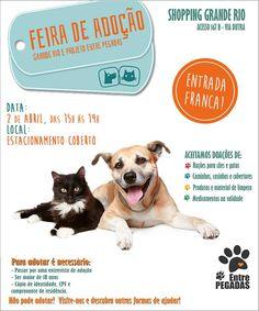 BONDE DA BARDOT: RJ: Campanha de adoção de cães e gatos acontece no Shopping Grande Rio, neste sábado (02/04)