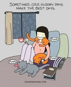 Ahhhh. Curling up with the bible, hot cup of tea and cats.  Let it rain, God is good!!!