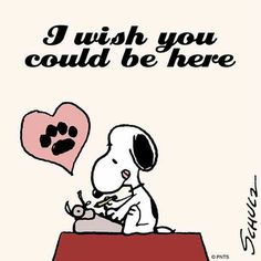 """I wish you could be here"", Snoopy ♡                                                                                                                                                     More"