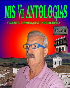 ANTOLOGIA  DEL  POETA  VICENTE  DOMINGUEZ  GARROCHENA: MIS  VII  ANTOLOGIAS