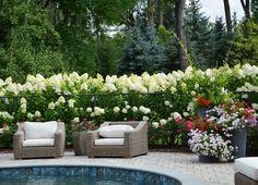 10 Breathtaking Hydrangea Gardens