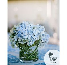#Hydrangeas match every style you want. With amazing flowers like these, your home will always look good #Colombia #flowers #houseFDE