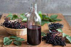Czarny bez - receptury lecznicze z kwiatów i owoców