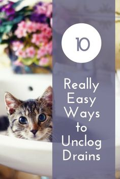 10 Really Easy Ways to Unclog Drains When you're faced with a clogged drain and the plunger won't work, these 10 techniques could save you the cost of a plumber. Bathroom Drain, Bathtub Drain, Sink Drain, Blocked Kitchen Sink, Blocked Sink, Diy Cleaning Products, Cleaning Hacks, Cleaning Schedules, Blocked Shower Drain