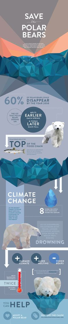 Infographic series describing the causes and effects of endangered species, featuring whales, polar bears, and bees. Student work.