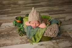 Newborn baby boy greens and browns succulent garden theme set by Houston, Tomball, Cypress, Conroe, the Woodlands, Magnolia, Montgomery TX, Texas Newborn and Child Photographer Debby Ditta Photography