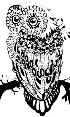 Adult Coloring Pages Book Colouring Cartoon Owls Color Sheets Paper Clay Zentangles Stress Doodles