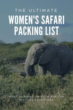 Going on an African safari, but not sure what to bring? This safari packing list for women can help. Start planning the adventure of a lifetime today...