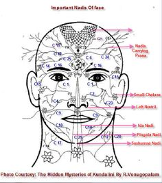 Ida nadi channels energy through left nostril pingala nadi channels through right nostril