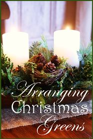 *Arranging Christmas Greens for a Fragrant Centerpiece Christmas Greenery, Christmas Arrangements, Woodland Christmas, Christmas Tablescapes, Merry Little Christmas, Christmas Candles, Christmas Centerpieces, Country Christmas, All Things Christmas