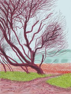 MAGE: David Hockney, The Arrival of Spring in Woldgate, East Yorkshire in 2011 (twenty eleven) - 18 March, 2011, iPad drawing printed on paper, 55 x 41 1/2 in. (139.7 x 105.4 cm), © David Hockney, Photo: Richard Schmidt