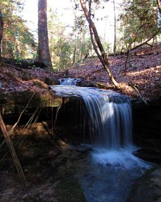 """Sam Calhoun on Instagram: """"A small falls close to the largest moonshine still I've ever found in Bankhead National Forest, AL.  #explore #getoutstayout  #optoutside…"""""""