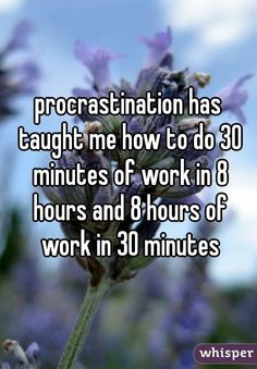 """procrastination has taught me how to do 30 minutes of work in 8 hours and 8 hours of work in 30 minutes"""