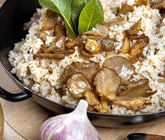 Recept na tradiční Vánoce: Pravý houbový kuba