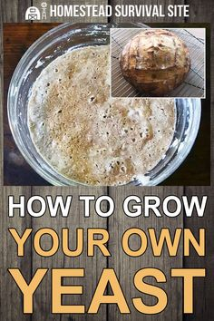 Yeast Bread Recipes, Sourdough Recipes, Homestead Survival, Grow Your Own, Vegan Baking, Different Recipes, Homesteading, Cooking Tips, Homemade