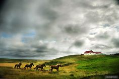 Iceland travel tips by the awesome @Bethany Salvon (BeersandBeans)!
