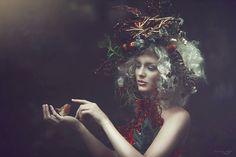 Sonja Saur Photography