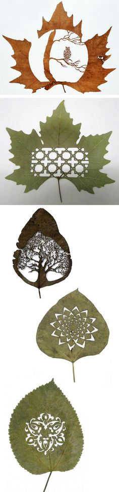 Leaves Art. Beautiful!