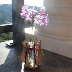 Easy to assemble Supawood vase. Bud Vases, Glass Vase, Terrier, Easy, People, Gifts, Home Decor, Presents, Decoration Home