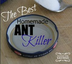 If your home is like many, and this time of year the ants seem to come into your home in droves, be sure to check out this Homemade Ant Killer recipe that is sure to get rid of them and keep them from coming back! You may have just a few of the bothersome insects, …