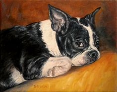 Boston's+Nap+InterruptedOil+Painting+Pet+Art+Animal+Terrier+Portrait,+painting+by+artist+Debra+Sisson