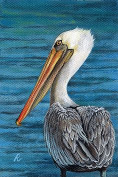 Florida Pelican Art Print by Peggy Dreher. Choose from multiple sizes and hundreds of frame and mat options. Canvas Art, Canvas Prints, Art Prints, Pelican Art, Pelican Drawing, Scratchboard Art, Guache, Nautical Art, Sea Birds