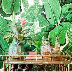 Fredag idag - snart dags att ta helg  Det är något visst med stora gröna blad, känns som om mm ser dem överallt just nu