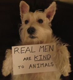 REAL MEN are kind to animals. So very true.