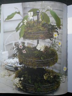 Cake stand garden from the book Teeny Tiny Gardening