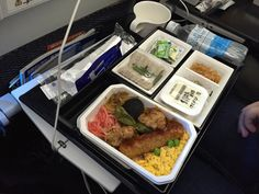 ANA 217, Tokyo-Haneda - Munich (economy) Japanese lunch option: yaki tori chicken with soba noodles, rice, green peas, ginger, Tofu, assorted pickled vegetables, Haagen-Dazs ice cream