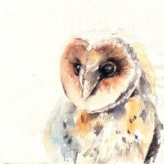 Owl Watercolor Painting Barn Owl Painting ORIGINAL by CanotStop