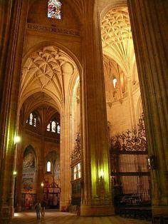 Segovia Catedral ~ Castilla y Leon, Spain
