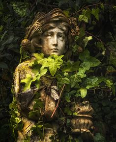 My Photographs Of A Fairytale Town – Sintra, Portugal Plant Aesthetic, Nature Aesthetic, Grand Art, Garden Statues, Photo Location, Landscape Photographers, Aesthetic Pictures, Light In The Dark, Aesthetic Wallpapers