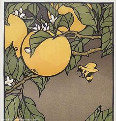 """Orange Blossoms"" - Linoleum Block Print Yoshiko Yamamoto inclusion of the bee, balances the comp. Japanese Prints, Japanese Art, Linoleum Block Printing, Bee Art, Botanical Drawings, Arts And Crafts Movement, Fauna, Woodblock Print, Art Studios"