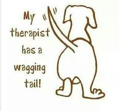 My therapist has a wagging tale